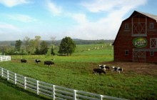lehigh-valley-dairy-farm